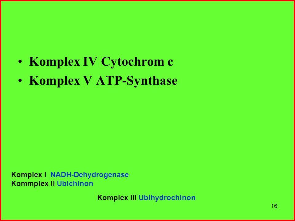 16 Komplex IV Cytochrom c Komplex V ATP-Synthase Komplex I NADH-Dehydrogenase Kommplex II Ubichinon Komplex III Ubihydrochinon