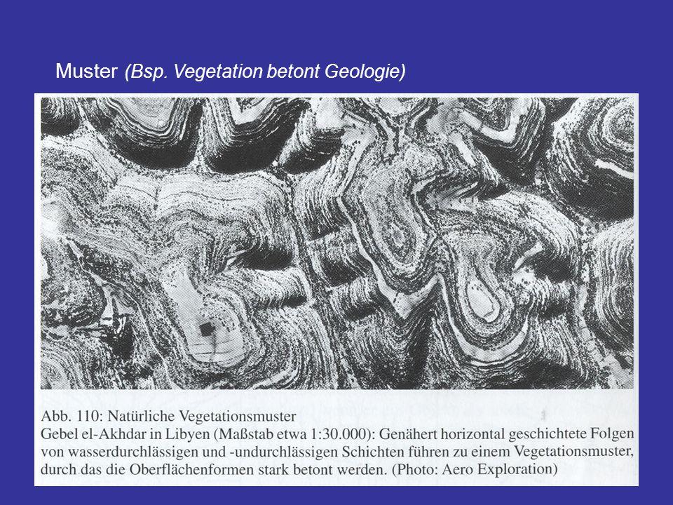 32 Muster (Bsp. Vegetation betont Geologie)
