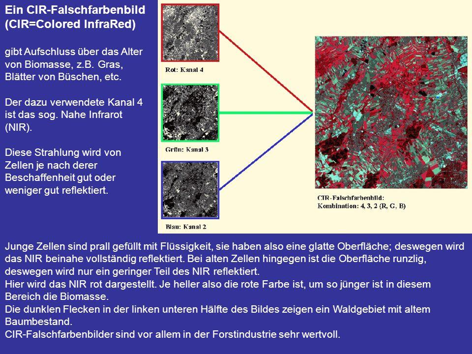 Ein CIR-Falschfarbenbild (CIR=Colored InfraRed) gibt Aufschluss über das Alter von Biomasse, z.B. Gras, Blätter von Büschen, etc. Der dazu verwendete