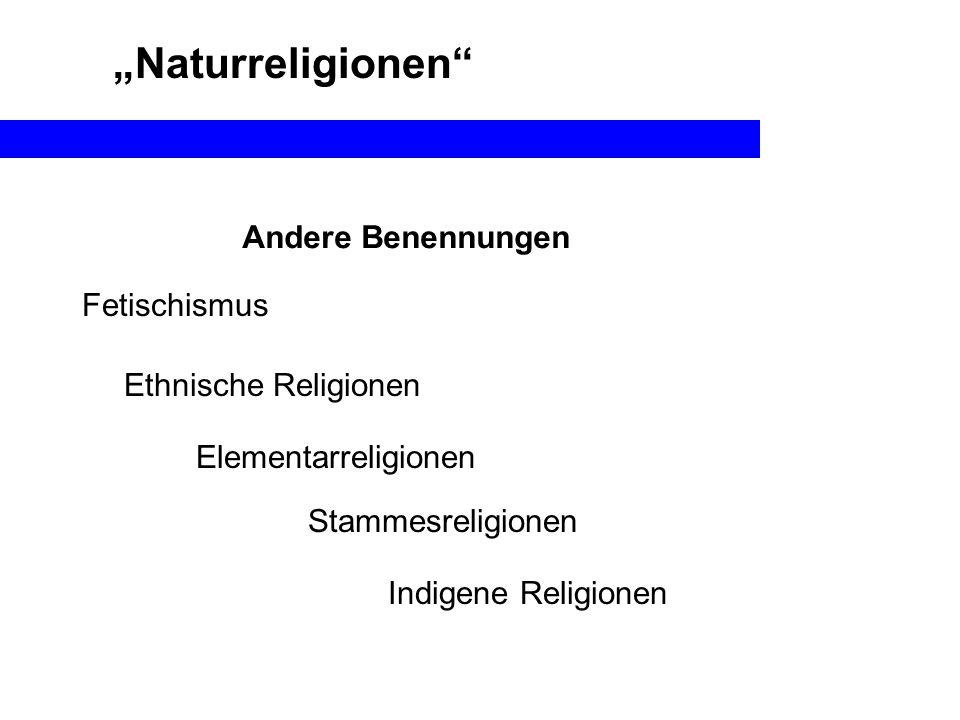 Naturreligionen Andere Benennungen Ethnische Religionen Elementarreligionen Indigene Religionen Stammesreligionen Fetischismus