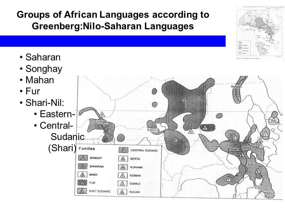 Groups of African Languages according to Greenberg:Nilo-Saharan Languages Saharan Songhay Mahan Fur Shari-Nil: Eastern- Central- Sudanic (Shari)