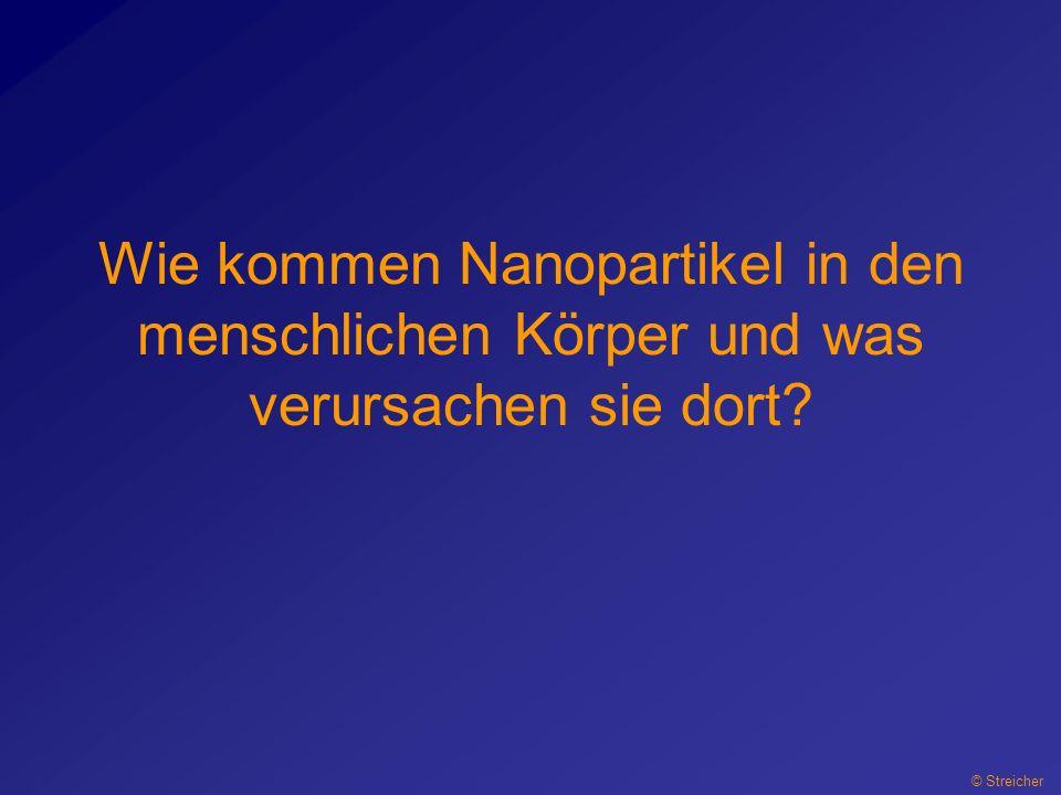Wie kommen Nanopartikel in den menschlichen Körper und was verursachen sie dort? © Streicher