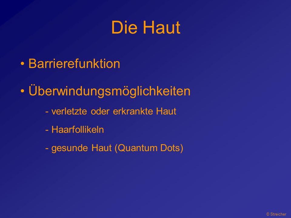 Die Haut © Streicher Barrierefunktion Überwindungsmöglichkeiten - verletzte oder erkrankte Haut - Haarfollikeln - gesunde Haut (Quantum Dots)