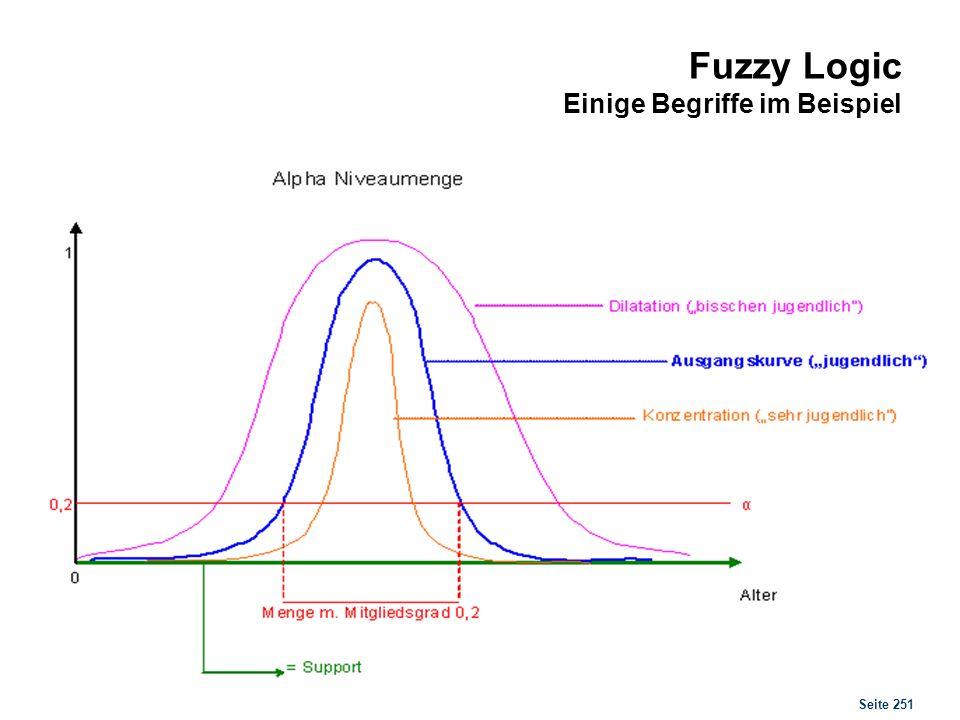 Seite 251 Fuzzy Logic Einige Begriffe im Beispiel