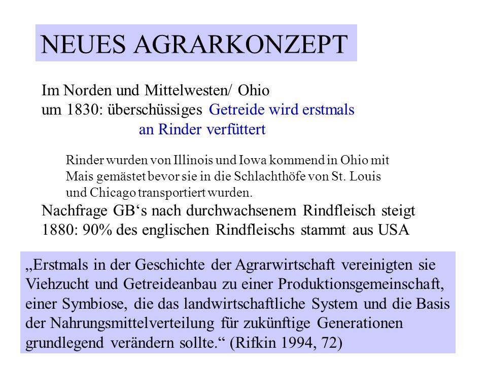 Im Norden und Mittelwesten/ Ohio um 1830: überschüssiges Getreide wird erstmals an Rinder verfüttert Rinder wurden von Illinois und Iowa kommend in Oh