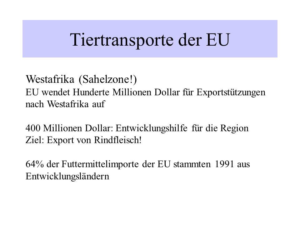 Tiertransporte der EU Westafrika (Sahelzone!) EU wendet Hunderte Millionen Dollar für Exportstützungen nach Westafrika auf 400 Millionen Dollar: Entwi