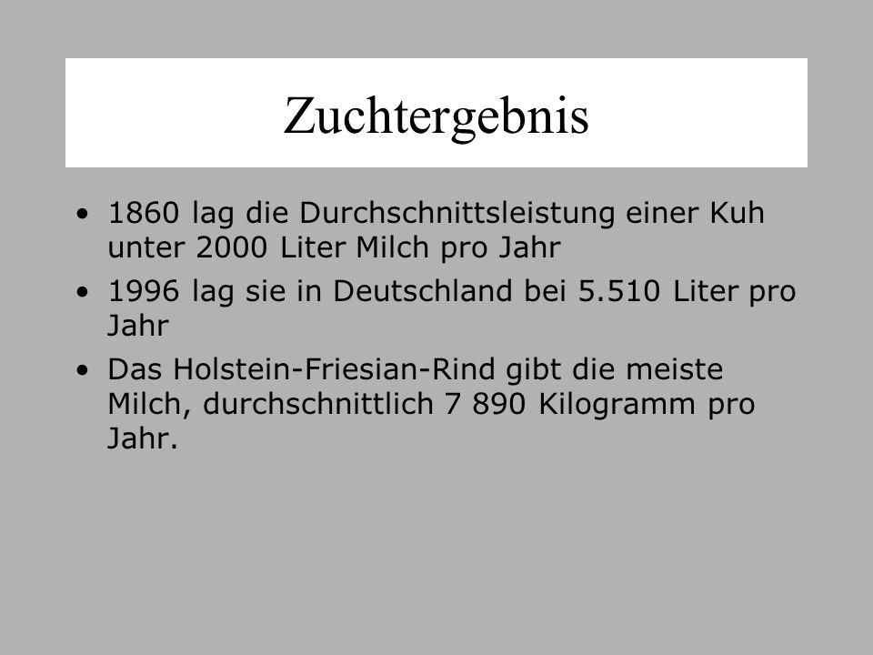 Zuchtergebnis 1860 lag die Durchschnittsleistung einer Kuh unter 2000 Liter Milch pro Jahr 1996 lag sie in Deutschland bei 5.510 Liter pro Jahr Das Holstein-Friesian-Rind gibt die meiste Milch, durchschnittlich 7 890 Kilogramm pro Jahr.