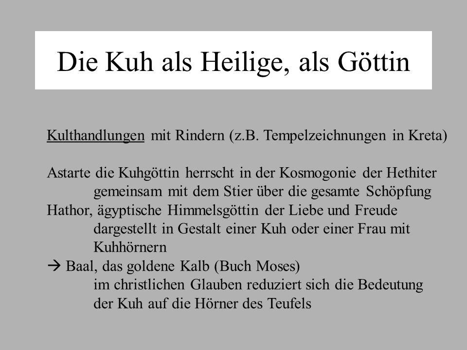 Die Kuh als Heilige, als Göttin Kulthandlungen mit Rindern (z.B.