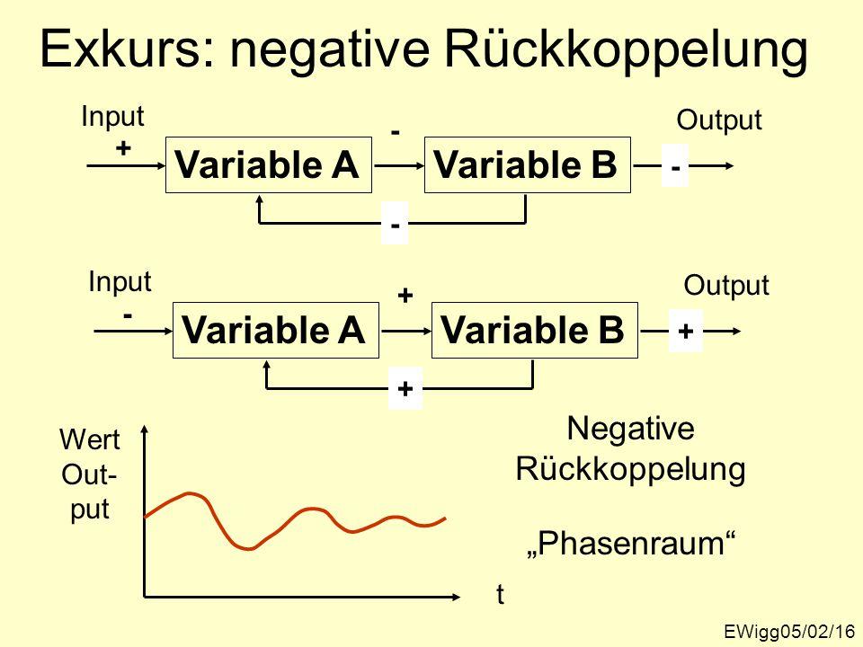 Exkurs: negative Rückkoppelung EWigg05/02/16 Variable A Input Variable B Output - - - Phasenraum t Wert Out- put Negative Rückkoppelung + Variable A I