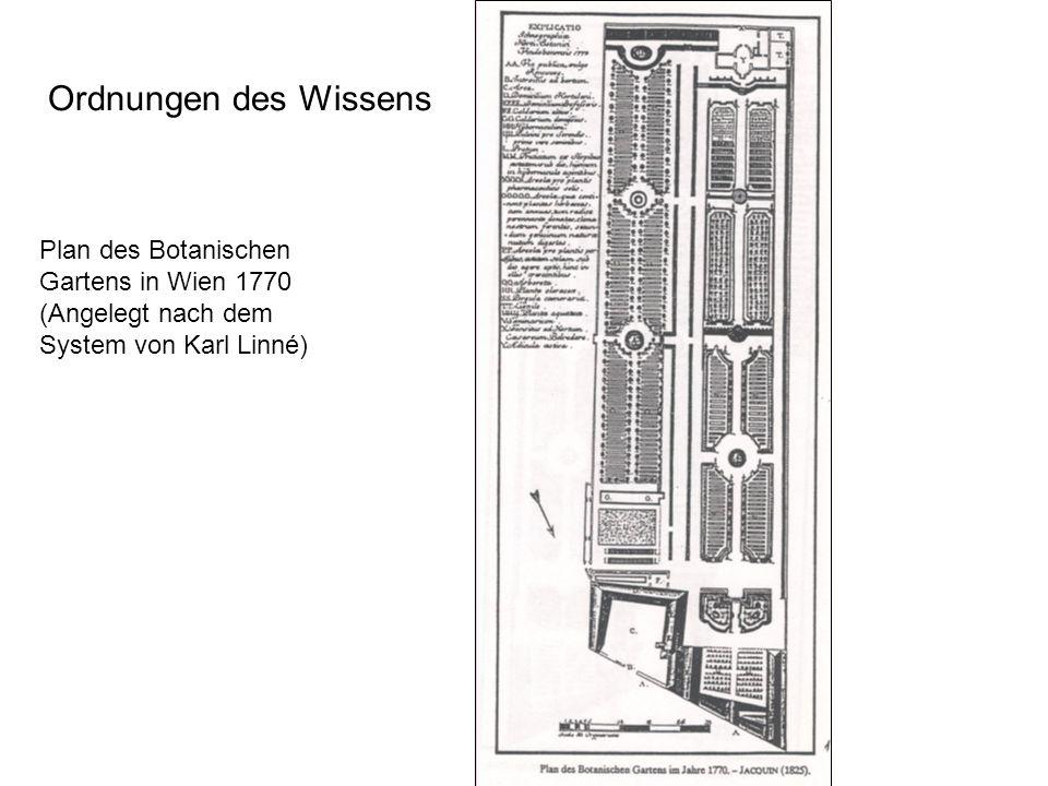 Plan des Botanischen Gartens in Wien 1770 (Angelegt nach dem System von Karl Linné) Ordnungen des Wissens