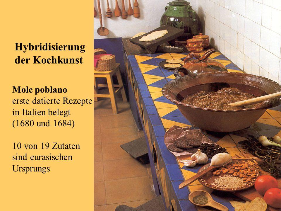 Mole poblano erste datierte Rezepte in Italien belegt (1680 und 1684) 10 von 19 Zutaten sind eurasischen Ursprungs Hybridisierung der Kochkunst