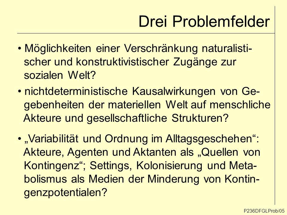 Drei Problemfelder P236DFGLProb/05 Möglichkeiten einer Verschränkung naturalisti- scher und konstruktivistischer Zugänge zur sozialen Welt? Variabilit