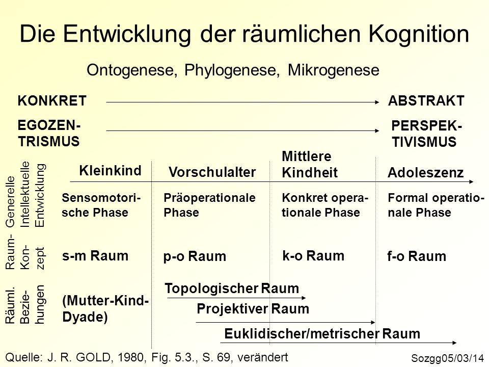 Die Entwicklung der räumlichen Kognition Sozgg05/03/14 Ontogenese, Phylogenese, Mikrogenese KONKRETABSTRAKT EGOZEN- TRISMUS PERSPEK- TIVISMUS Kleinkin