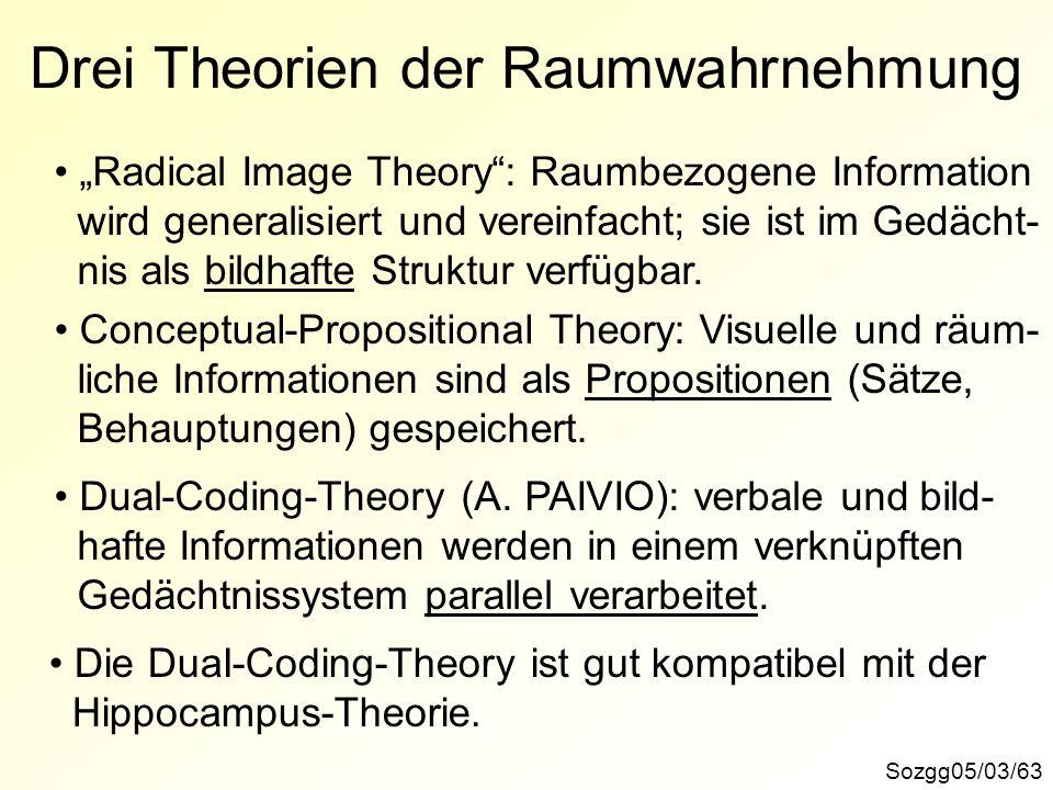 Drei Theorien der Raumwahrnehmung Sozgg05/03/63 Radical Image Theory: Raumbezogene Information wird generalisiert und vereinfacht; sie ist im Gedächt-