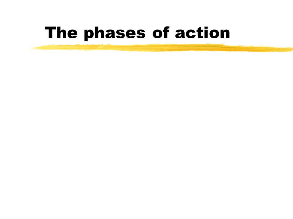 The phases of action