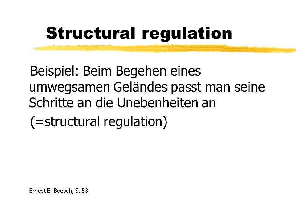 Structural regulation Beispiel: Beim Begehen eines umwegsamen Geländes passt man seine Schritte an die Unebenheiten an (=structural regulation) Ernest E.
