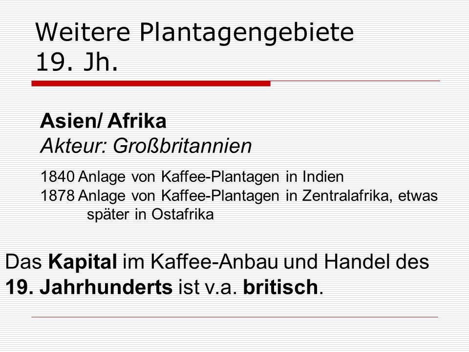 Weitere Plantagengebiete 19. Jh. 1840 Anlage von Kaffee-Plantagen in Indien 1878 Anlage von Kaffee-Plantagen in Zentralafrika, etwas später in Ostafri