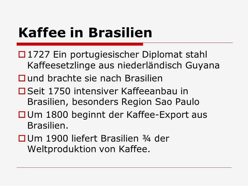 Kaffee in Brasilien 1727 Ein portugiesischer Diplomat stahl Kaffeesetzlinge aus niederländisch Guyana und brachte sie nach Brasilien Seit 1750 intensi