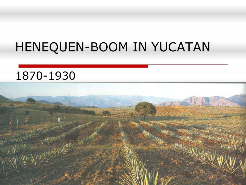 HENEQUEN-BOOM IN YUCATAN 1870-1930