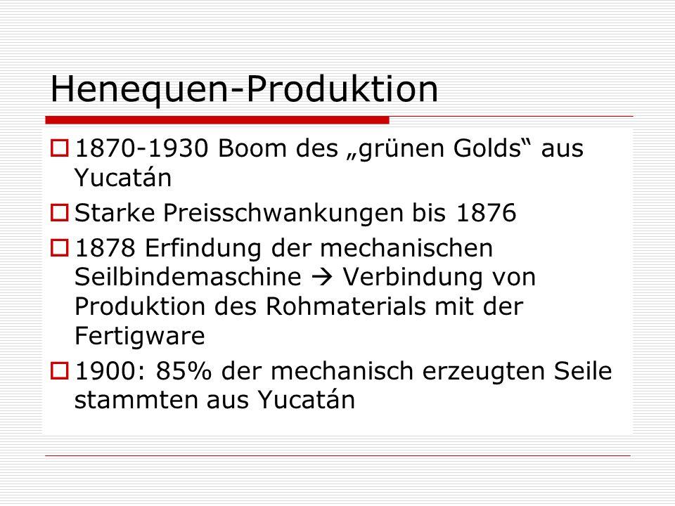 Henequen-Produktion 1870-1930 Boom des grünen Golds aus Yucatán Starke Preisschwankungen bis 1876 1878 Erfindung der mechanischen Seilbindemaschine Ve