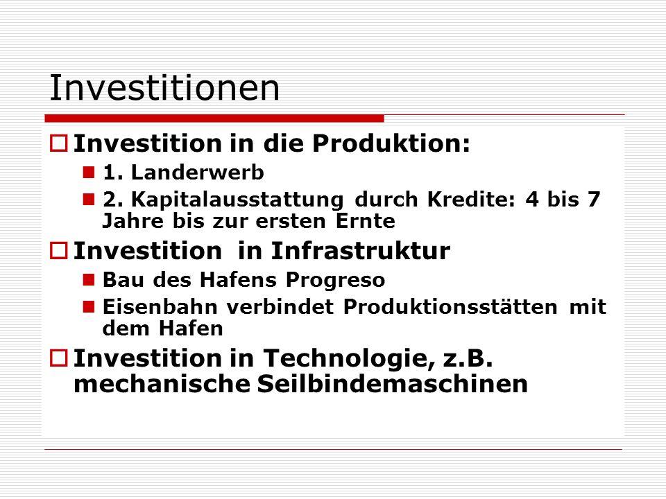 Investitionen Investition in die Produktion: 1. Landerwerb 2. Kapitalausstattung durch Kredite: 4 bis 7 Jahre bis zur ersten Ernte Investition in Infr