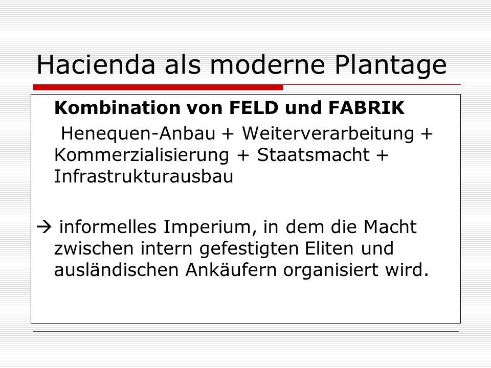 Hacienda als moderne Plantage Kombination von FELD und FABRIK Henequen-Anbau + Weiterverarbeitung + Kommerzialisierung + Staatsmacht + Infrastrukturau