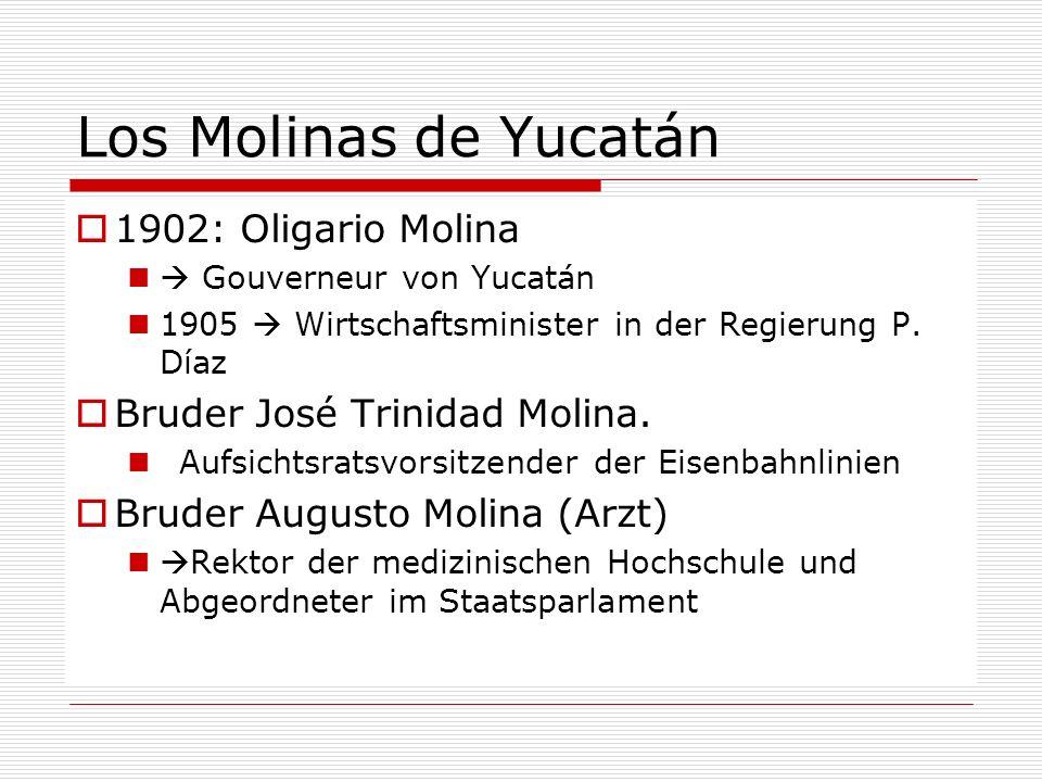 Los Molinas de Yucatán 1902: Oligario Molina Gouverneur von Yucatán 1905 Wirtschaftsminister in der Regierung P. Díaz Bruder José Trinidad Molina. Auf