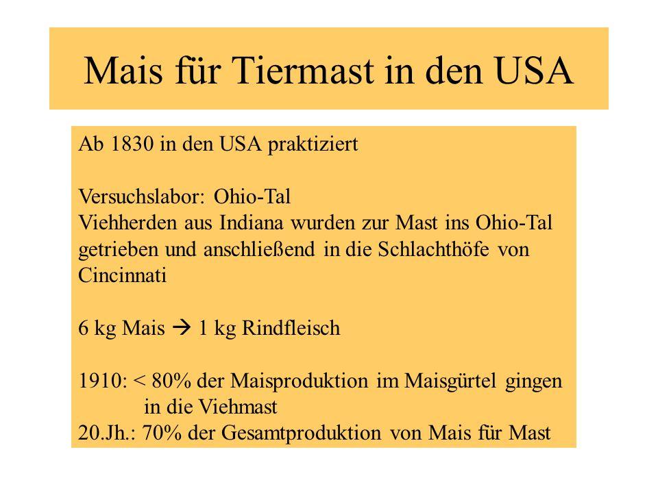 Mais für Tiermast in den USA Ab 1830 in den USA praktiziert Versuchslabor: Ohio-Tal Viehherden aus Indiana wurden zur Mast ins Ohio-Tal getrieben und