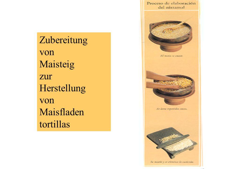 Zubereitung von Maisteig zur Herstellung von Maisfladen tortillas