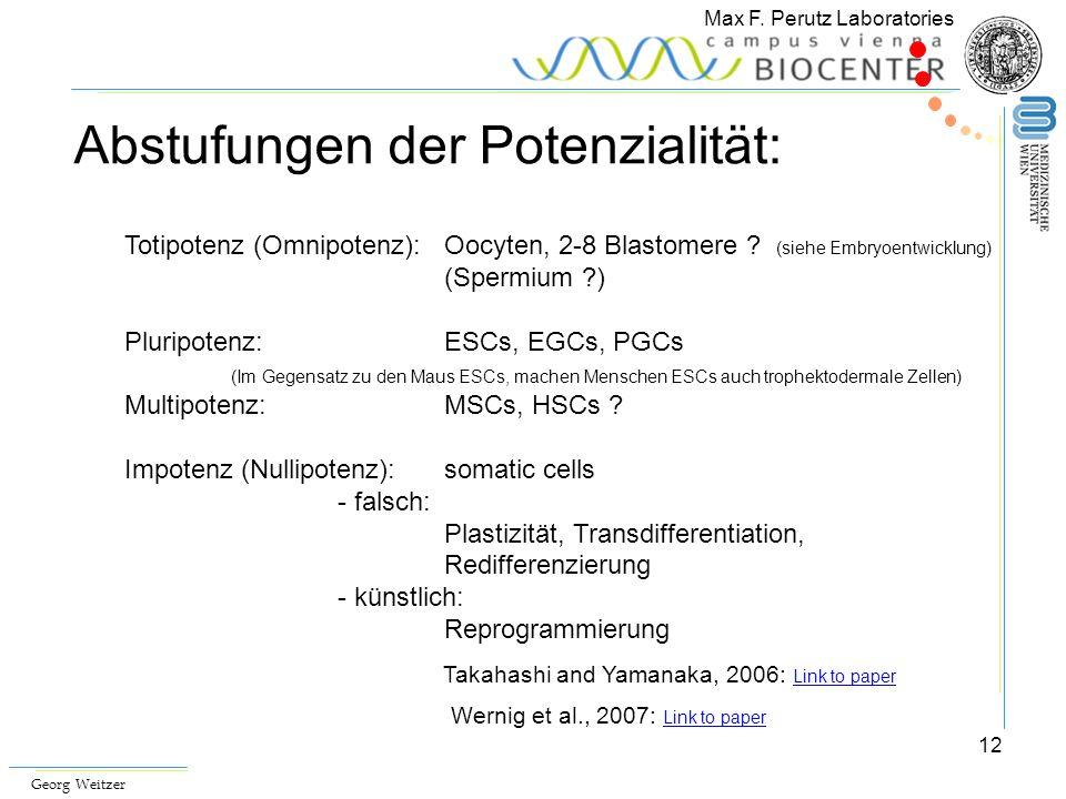 12 Max F. Perutz Laboratories Georg Weitzer Totipotenz (Omnipotenz): Oocyten, 2-8 Blastomere ? (siehe Embryoentwicklung) (Spermium ?) Pluripotenz: ESC