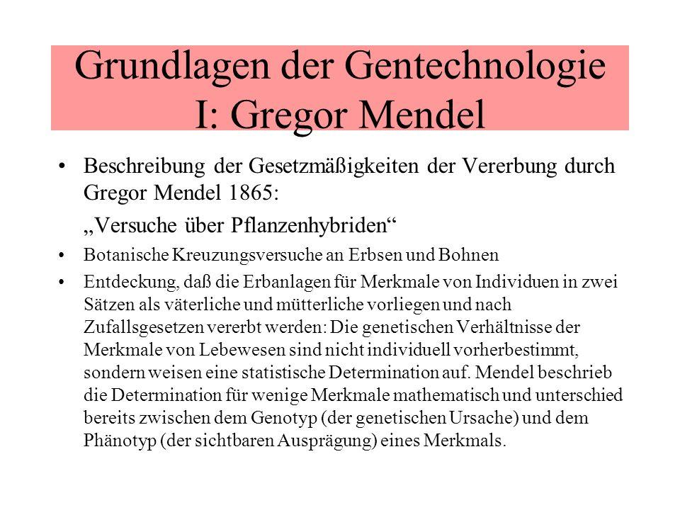 Grundlagen der Gentechnologie I: Gregor Mendel Beschreibung der Gesetzmäßigkeiten der Vererbung durch Gregor Mendel 1865: Versuche über Pflanzenhybrid