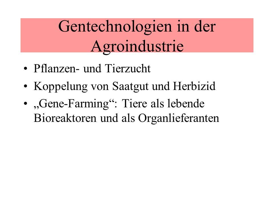 Gentechnologien in der Agroindustrie Pflanzen- und Tierzucht Koppelung von Saatgut und Herbizid Gene-Farming: Tiere als lebende Bioreaktoren und als O
