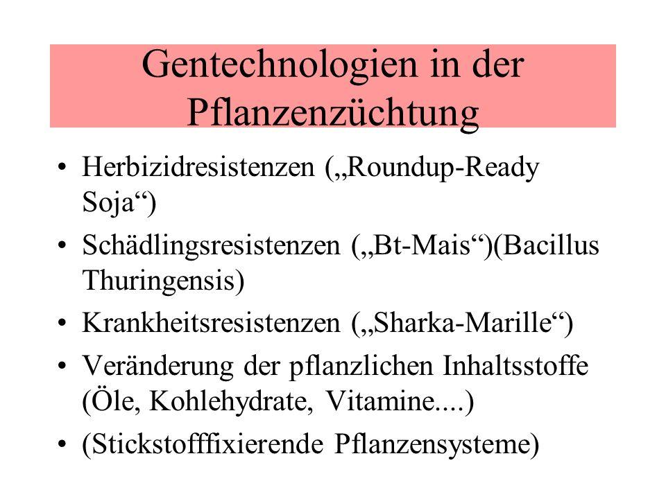 Gentechnologien in der Pflanzenzüchtung Herbizidresistenzen (Roundup-Ready Soja) Schädlingsresistenzen (Bt-Mais)(Bacillus Thuringensis) Krankheitsresi