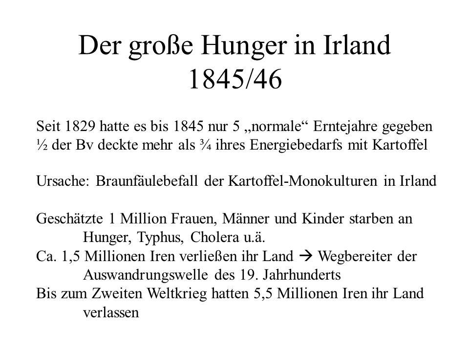 Der große Hunger in Irland 1845/46 Ursache: Braunfäulebefall der Kartoffel-Monokulturen in Irland Geschätzte 1 Million Frauen, Männer und Kinder starb