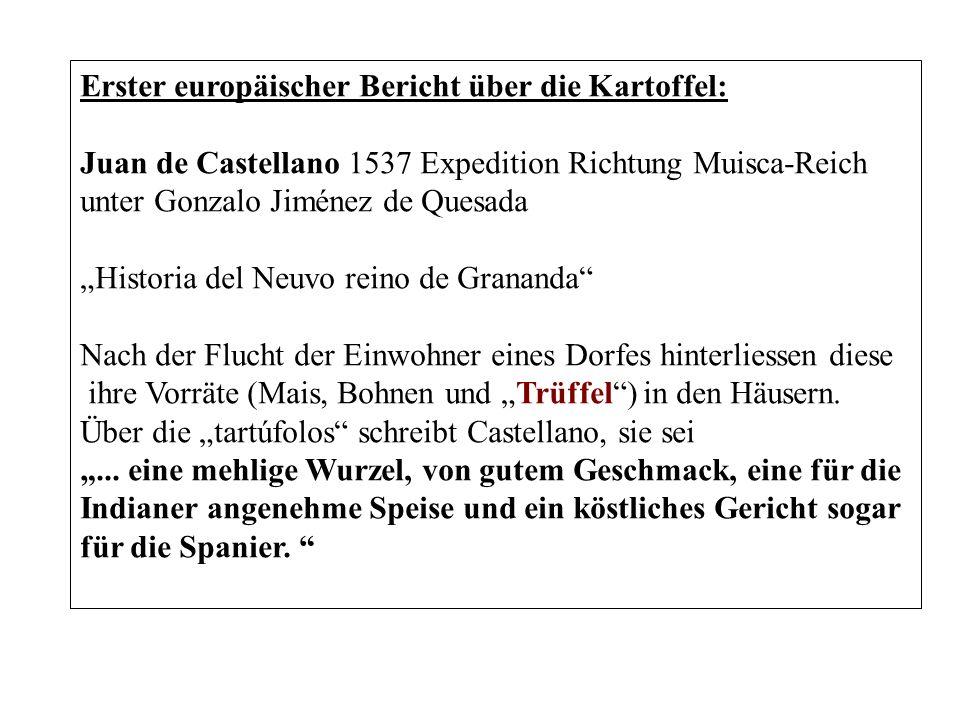 Erster europäischer Bericht über die Kartoffel: Juan de Castellano 1537 Expedition Richtung Muisca-Reich unter Gonzalo Jiménez de Quesada Historia del