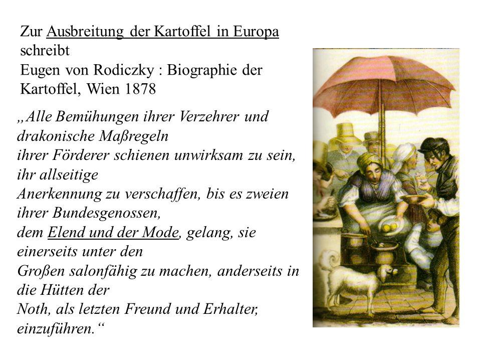 Zur Ausbreitung der Kartoffel in Europa schreibt Eugen von Rodiczky : Biographie der Kartoffel, Wien 1878 Alle Bemühungen ihrer Verzehrer und drakonis