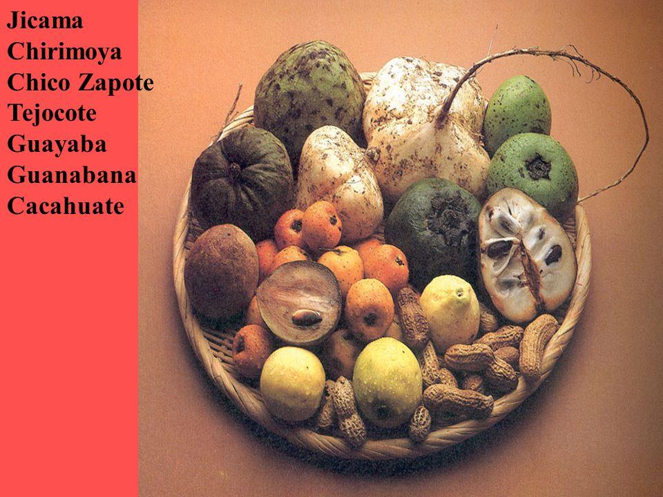 copyright.Martina Kaller-Dietrich Jicama Chirimoya Chico Zapote Tejocote Guayaba Guanabana Cacahuate
