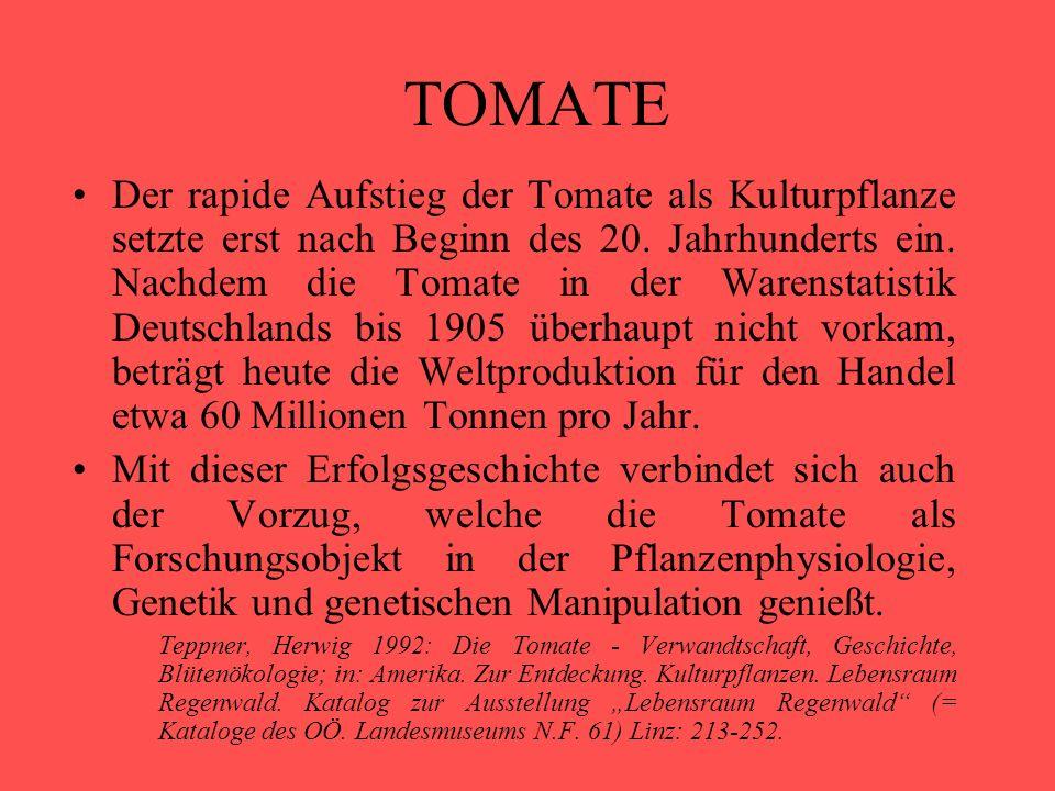 TOMATE Der rapide Aufstieg der Tomate als Kulturpflanze setzte erst nach Beginn des 20. Jahrhunderts ein. Nachdem die Tomate in der Warenstatistik Deu