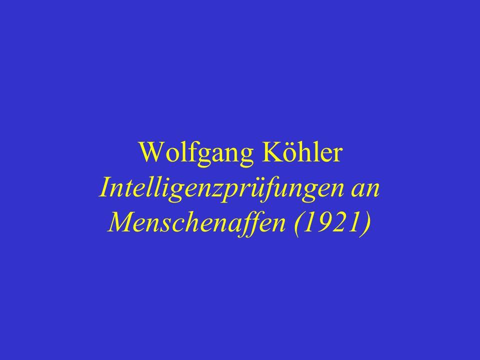 Wolfgang Köhler Intelligenzprüfungen an Menschenaffen (1921)