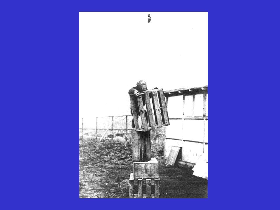 Ferdinand Hoppe (1930) Tendenz zur spontanen Wiederaufnahme von Handlungen hängt außer von der Art der Tätigkeit auch von Erfolgs- und Misserfolgerlebnissen ab