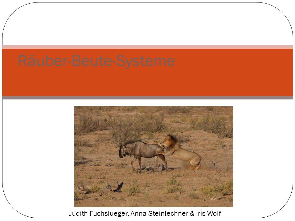 Räuber-Beute-Systeme Judith Fuchslueger, Anna Steinlechner & Iris Wolf
