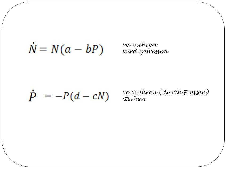 Herleitung von Volterra ungestörten Wachstumsraten pro Zeiteinheit dt seien λ 1 und λ 2 mittlere Anzahl der Begegnungen zwischen Beute und Räuber pro Zeiteinheit dt ist α NP, α aus den positiven, reellen Zahlen genügend große Zahl n an Begegnungen haben Effekt β 1, β 2 auf die Populationen N, P