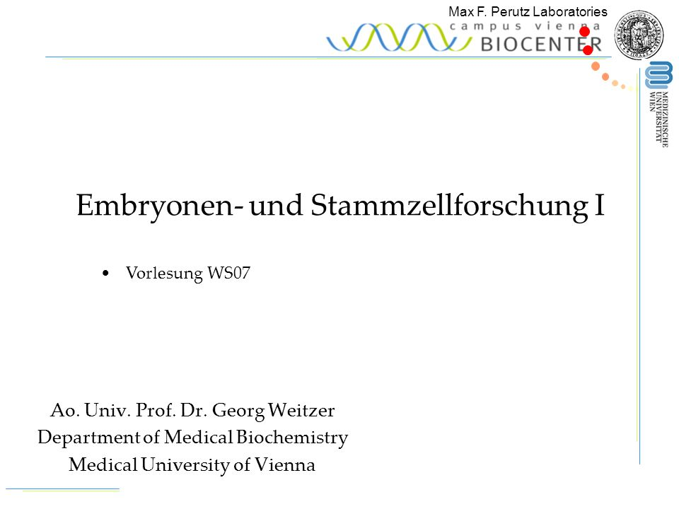 Max F. Perutz Laboratories Ao. Univ. Prof. Dr. Georg Weitzer Department of Medical Biochemistry Medical University of Vienna Embryonen- und Stammzellf