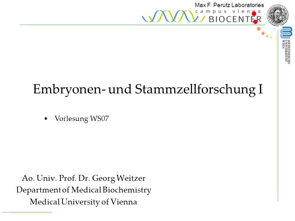 Max F.Perutz Laboratories Georg Weitzer Kapitel 1: Embryonale und somatische Stammzellen 1.1.