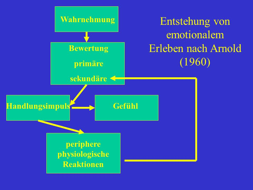 Wahrnehmung Bewertung primäre sekundäre HandlungsimpulsGefühl periphere physiologische Reaktionen Entstehung von emotionalem Erleben nach Arnold (1960
