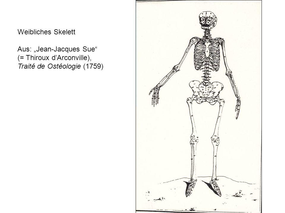 Weibliches Skelett Aus: Jean-Jacques Sue (= Thiroux dArconville), Traité de Ostéologie (1759)
