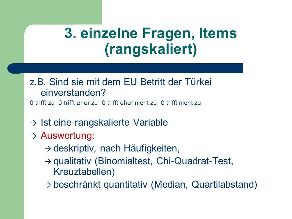 3. einzelne Fragen, Items (rangskaliert) z.B. Sind sie mit dem EU Betritt der Türkei einverstanden? 0 trifft zu 0 trifft eher zu 0 trifft eher nicht z