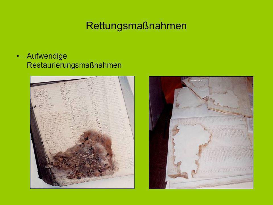 Aufwendige Restaurierungsmaßnahmen Rettungsmaßnahmen