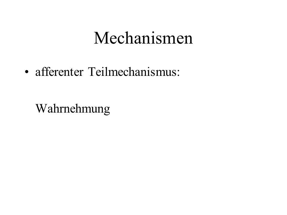 Mechanismen afferenter Teilmechanismus: Wahrnehmung