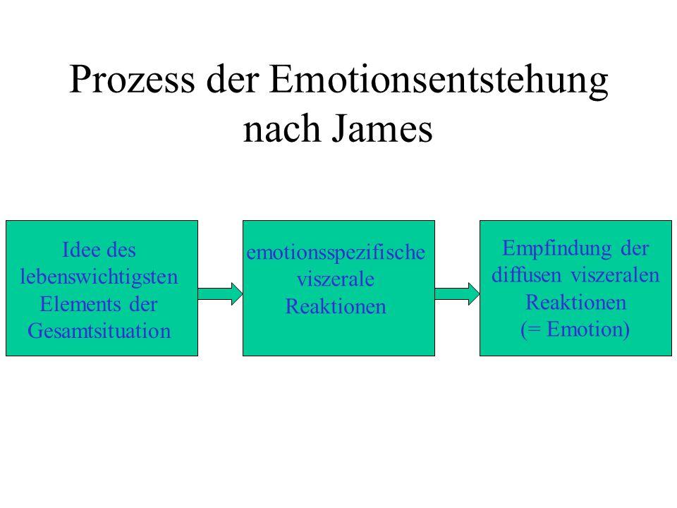 Prozess der Emotionsentstehung nach James Idee des lebenswichtigsten Elements der Gesamtsituation emotionsspezifische viszerale Reaktionen Empfindung der diffusen viszeralen Reaktionen (= Emotion)